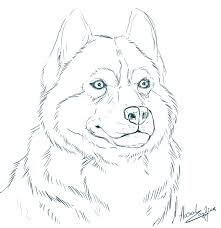 Small Picture Printable 14 Realistic Husky Coloring Pages 4709 Siberian Husky