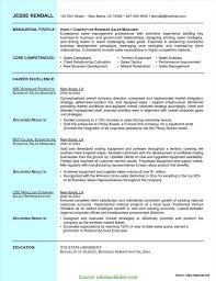Resume Sample Doc Useful Salesman Cv Sample Doc Sales Manager Resume Sample Doc 34