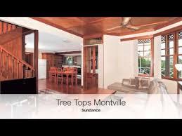 Treehouse Montville