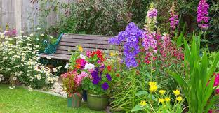 success for outdoor potted plants