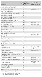 Precise Neb Enzyme Compatibility Chart 2019