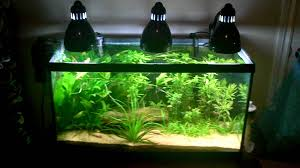 Fish Tank Lights Cheap Fish Tank Lamp Lighting And Ceiling Fans