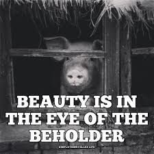 Beauty Is In The Eye Of The Beholder Quote Best Of Beauty Is In The Eye Of The Beholder [QUOTE] Simple Thing Called Life