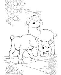 Farm Animal Coloring Page Pages Animals Printable Staranovaljainfo