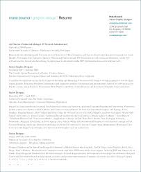 Best Professional Resume Template From Resume Layout Samples Free