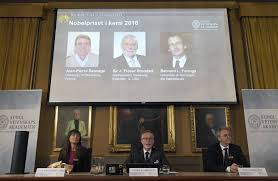 nobel prize in chemistry awarded to three scientists for design nobel prize in chemistry awarded to three scientists for design synthesis of molecular machines wsj