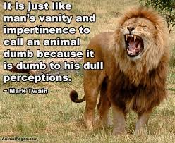 Beautiful Animal Quotes Best Of Quotes About Beautiful Animals 24 Quotes