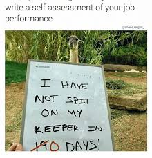 Write A Self Assessment Of Your Job Performance Reigns Remember I ...