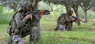 Image result for भारतीय सेना ने दिखाया विकराल रूप