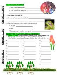 For more science resources see our plant cell worksheets. Bill Nye The Science Guy Plants Nature Video Worksheet Tpt