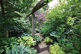 Corner Garden Design Beauteous Shade Garden Pictures Gallery Garden Design