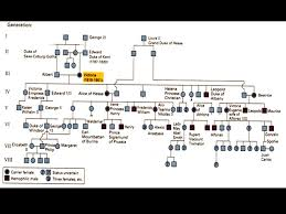 How To Complete A Pedigree Chart Understanding Inheritance Patterns How To Interpret