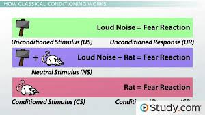Example Of Classical Conditioning Classical Conditioning In Psychology Definition Principles