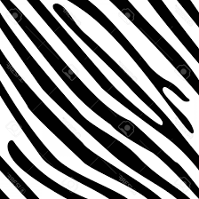 Photostock Vector Vector Illustration Zebra Stripes Seamless Pattern