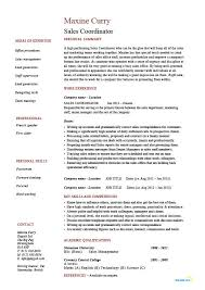 marketing and sales cv sales coordinator resume sample example job description customer