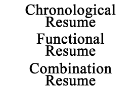 Types Of Resume 20 Resume Type Format Format Different Type