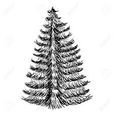 手描きスケッチのクリスマス ツリーテクスチャ モミの木ベクトル イラスト アイコン