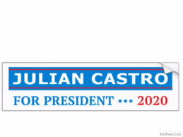 Image result for Julian castro 2020 pic