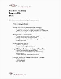 90 Day Plan Template For New Manager New Employee Training Plan