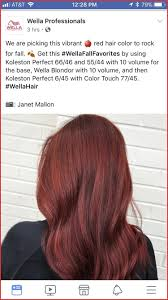 Wella Red Color Chart Wella Color Touch Chart Reds Best Picture Of Chart