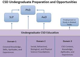 Planning Your Education In Communication Sciences And Disorders
