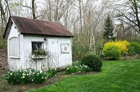 outdoor kitchen shed lot picture outdoor kitchen shed ideas