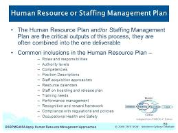 Staffing Model Template Project Human Resource Management Plan Example Project Human