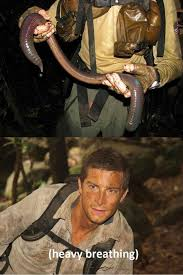Bear Grylls heavy breathing - Memes and Comics via Relatably.com