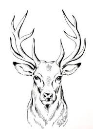 Pin By Donna Maclure On Headstone Idea In 2019 Drawings Animal
