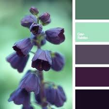Purple and green wedding colors Lavender Mauve Green Color Purple And Green Wedding Behelitinfo Mauve Green Color Purple And Green Wedding Theme Ideas Lavender And
