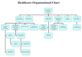 36 Meticulous Health Care Organizational Chart