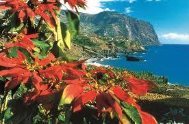 Madeira Gartenreisen