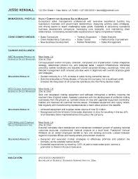 Here Are Sales Professional Resume Sample – Articlesites.info