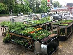 best of garden s images large size of organic and garden s garden soil garden supply best of garden s