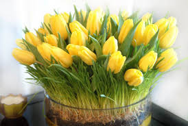 yellow tulips for bright table decoration and cheerful centerpiece ideas