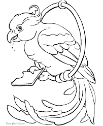 Small Picture Free Printable Parrot Coloring Pages Birds