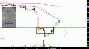 Imnp Stock Chart Immune Pharmaceuticals Inc Imnp Stock Chart Technical
