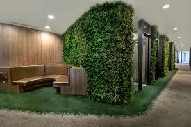 corridor feature wall using artificial green walls