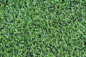 Green artificial turf texture for background Stock Photo