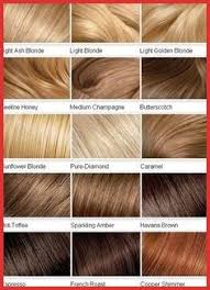 Hair Color Filler Chart 155034 Clairol Professional Creme