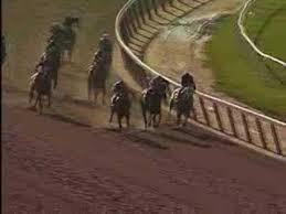 Summer Bird 2009 Belmont Stakes