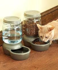 automatic water bowl for cats mason jar or feeders t95