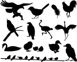 フリーダウンロード素材シルエットイラスト画像魚 恐竜 昆虫