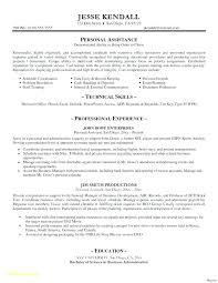 Executive Resume Template Word Best Resume Marketing Executive Examples Of Marketing Executive Resumes