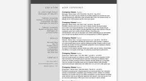 Minimalist Resume Template Word Free Best Of Resume Cv Docx Sample Best Minimalist Resume Template Word Free Best