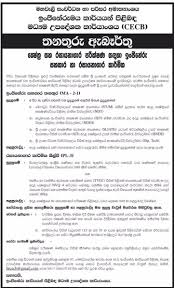 Cecb Vacancies Government Jobs Government Gazette Government