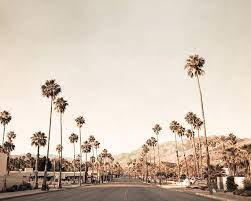 palm springs photography mid century