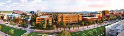 University Of Arizona The Princeton Review College