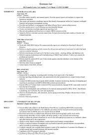 Bsa Analyst Sample Resume BSA Analyst Resume Samples Velvet Jobs 1