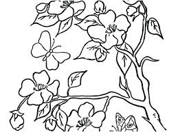 Coloring Pages Flowers And Butterflies Coloring Pages Of Flowers And